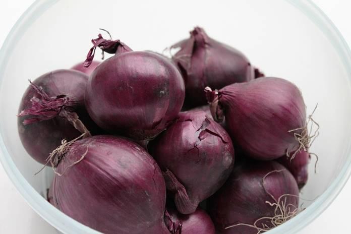 varietas bawang merah