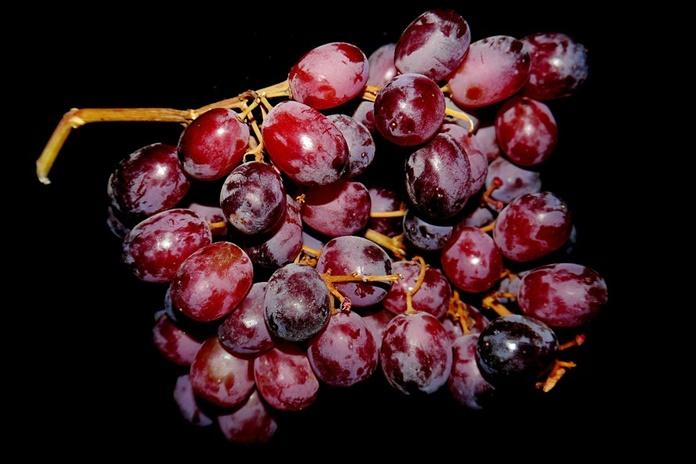 kandungan buah anggur