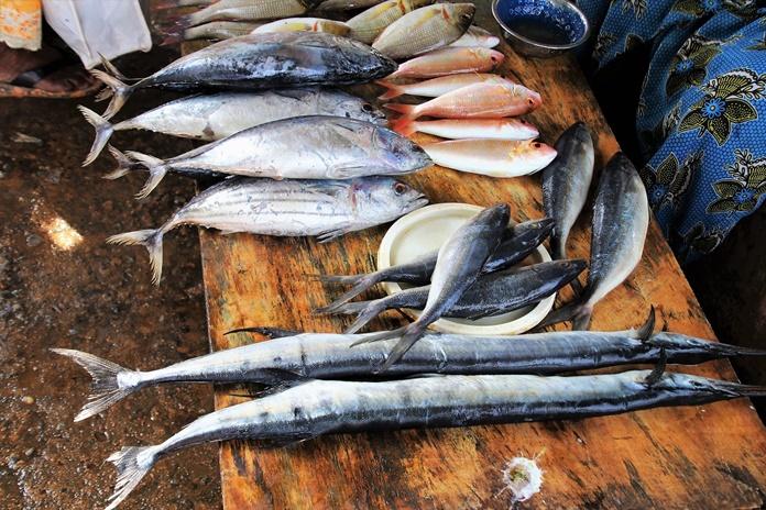 pasar ikan fandoi